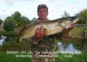 snoekvissen2009-10-15_10-42-19