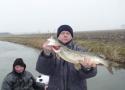 snoekvissen2011-03-15_15-27-10